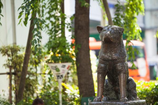 忠犬ハチ公像
